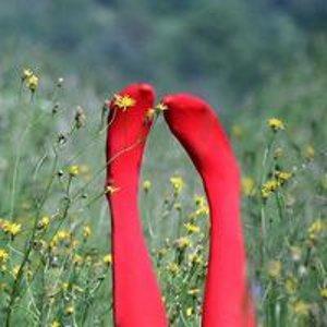 Красные Башмачки