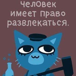 Костя Кошкин