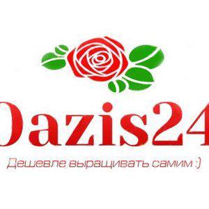 Oazis24