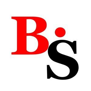 Bitronik Service