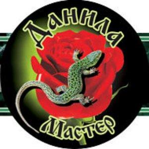 ooodanila-master