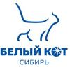 Белый Кот Сибирь, ООО