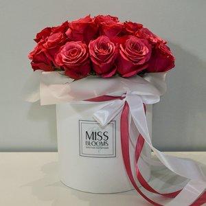 Miss Blooms