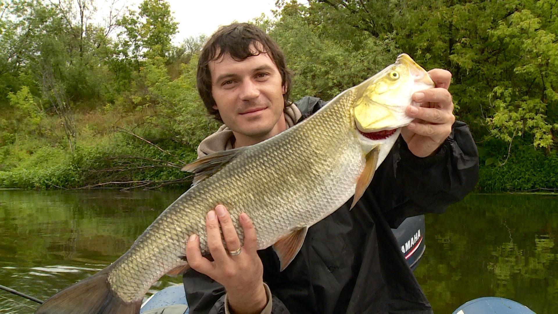 Отзывы о рыбалке на суре