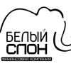 Белый Слон