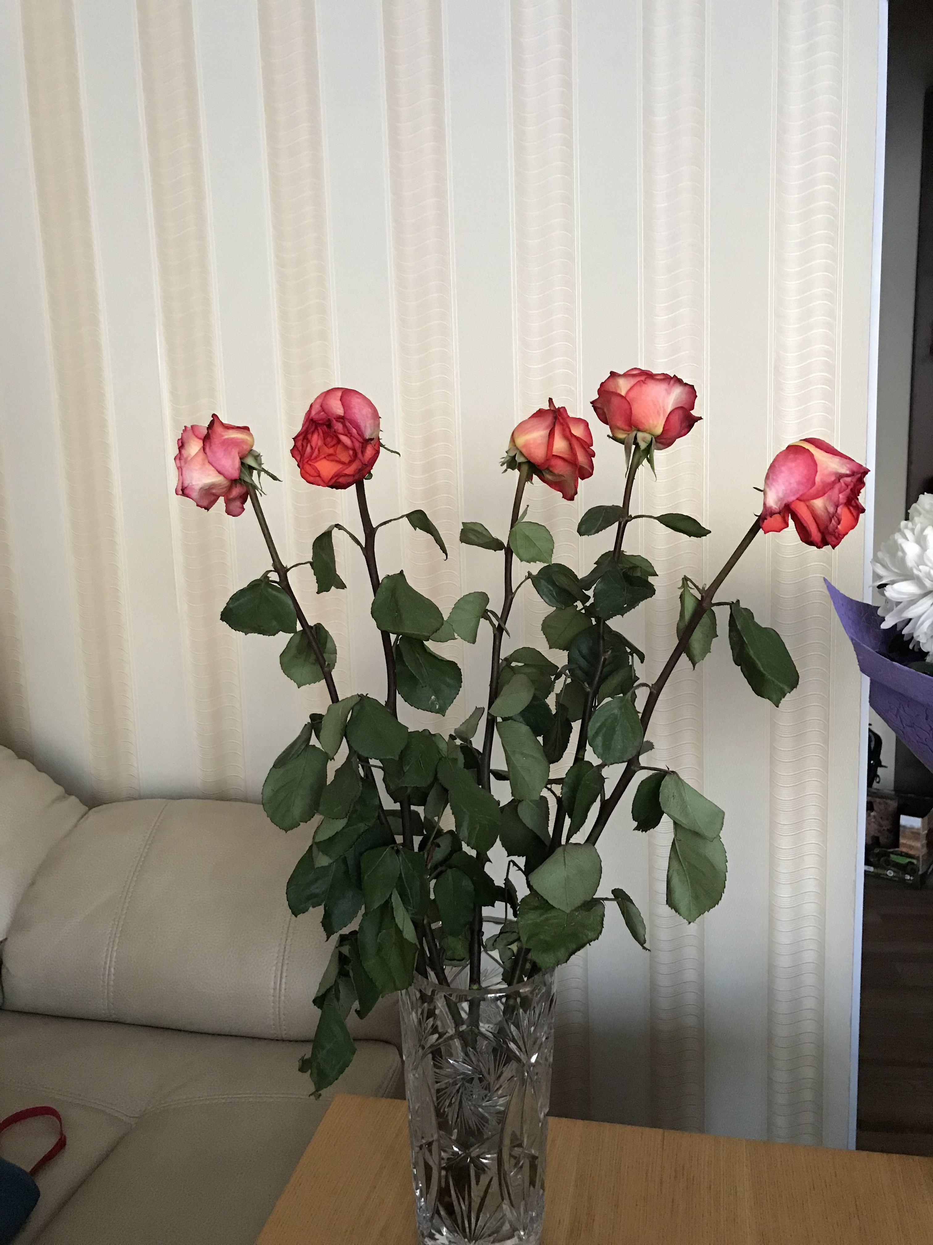 Росцветторг кемерово цены на цветы