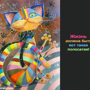 Марина Скрипко
