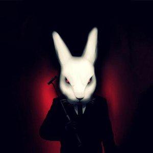 В Погоне За Кроликом