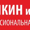 Аликин и Кобяков