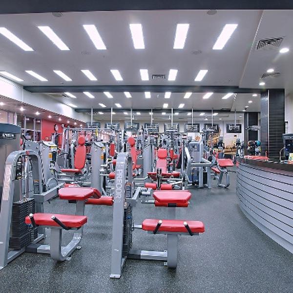 Тренажерный зал площадью 500 кв.м.: кардиозона и зона троссово-блочных тренажеров.