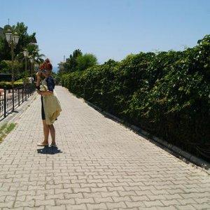 Людмила Червинская