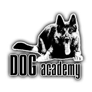 Собачья Академия