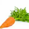 Морковка Lady