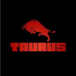 TAURUS Detailing & Service