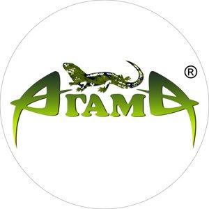 Агама