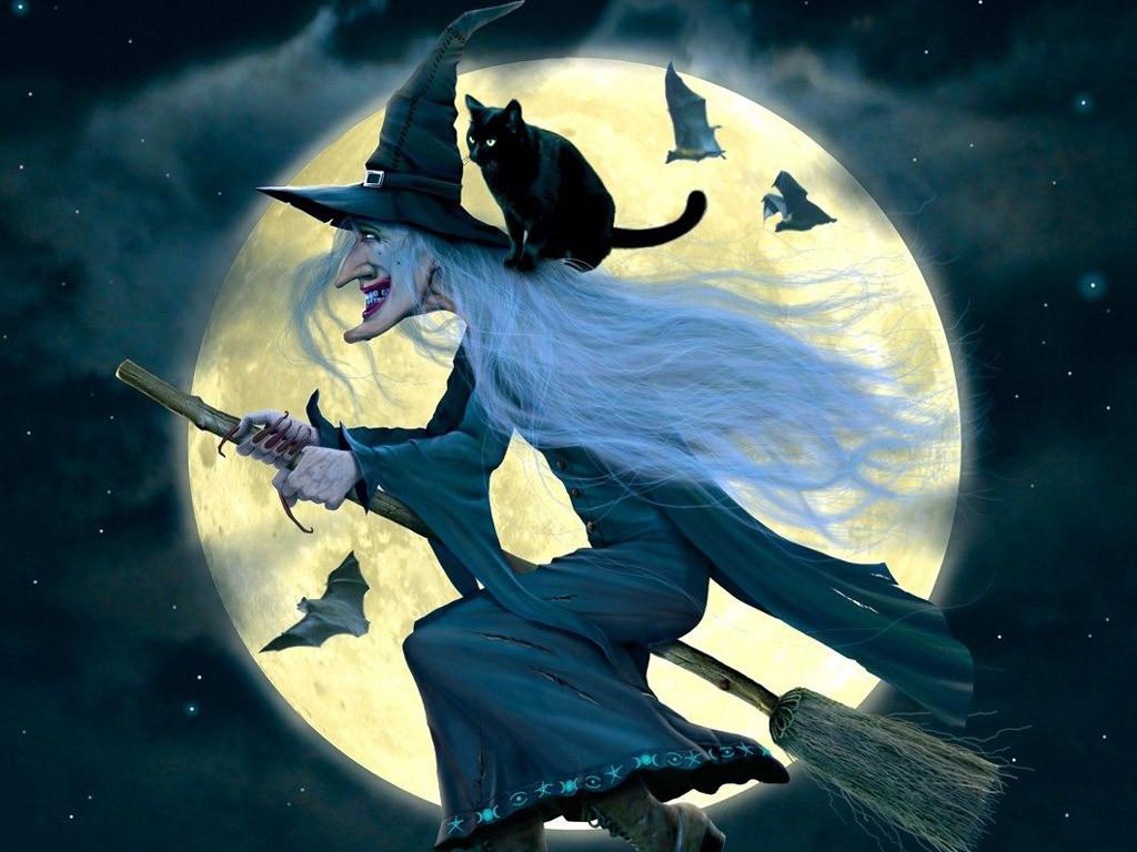 День, картинки ведьма на метле с котом