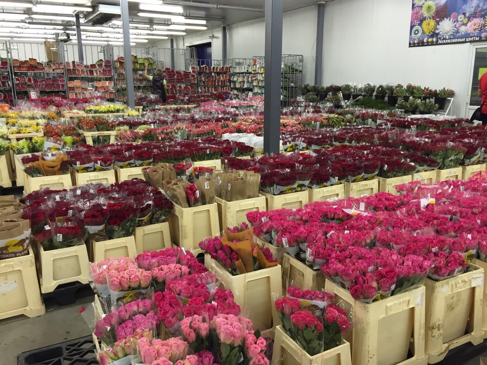 Оптовая продажа цветы в минске