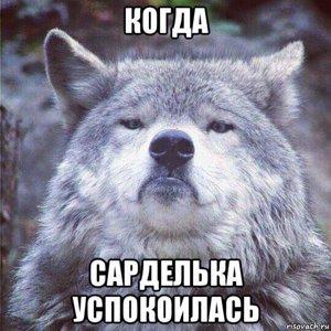 СарДельКа_СпраВедлИвоСтИ