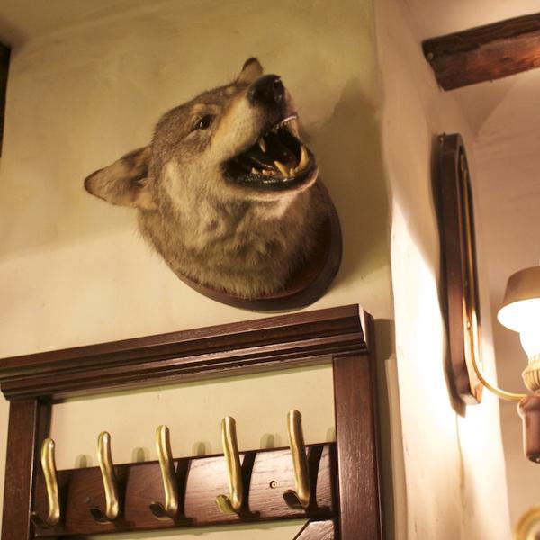 вот такой волк :)