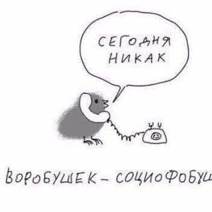 ВоробушеК