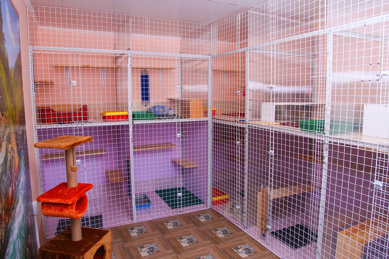 Гостиница для животных картинка