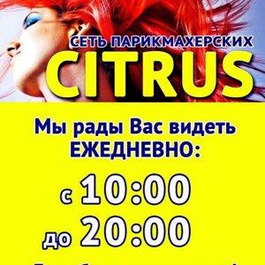 сеть парикмахерских CITRUS