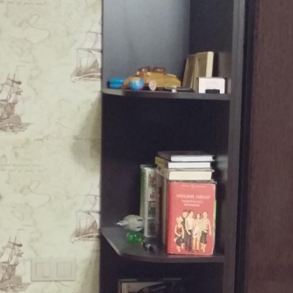 внешний вид части шкафа, о которой идет речь