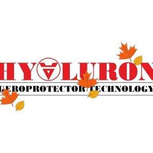 Vektor Hyaluron