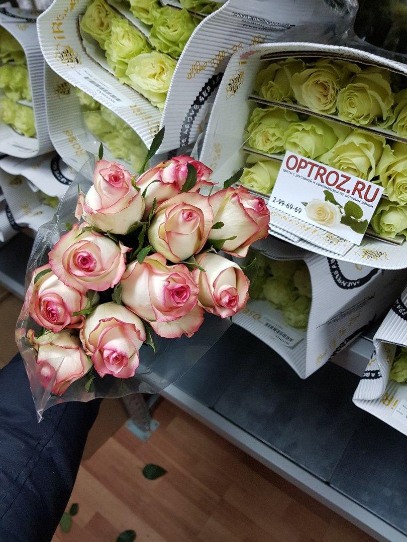Цветы оптом уфа цены