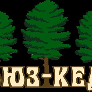 Союз-Кедр