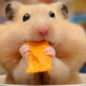 Люблю поесть :)