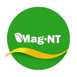 Mag-NT