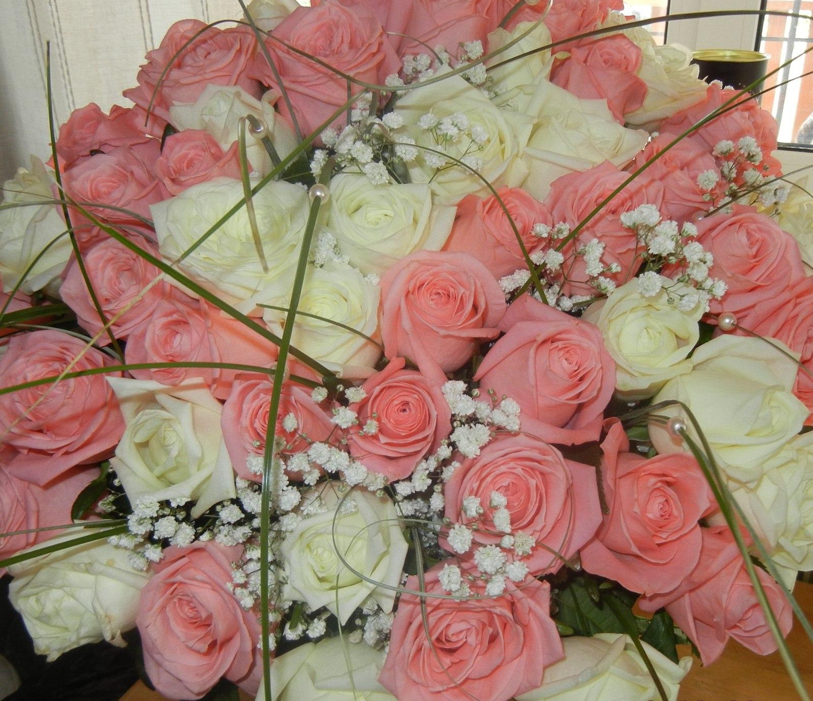 Где купить оптом цветы барнаул, фуксию воронеже купить