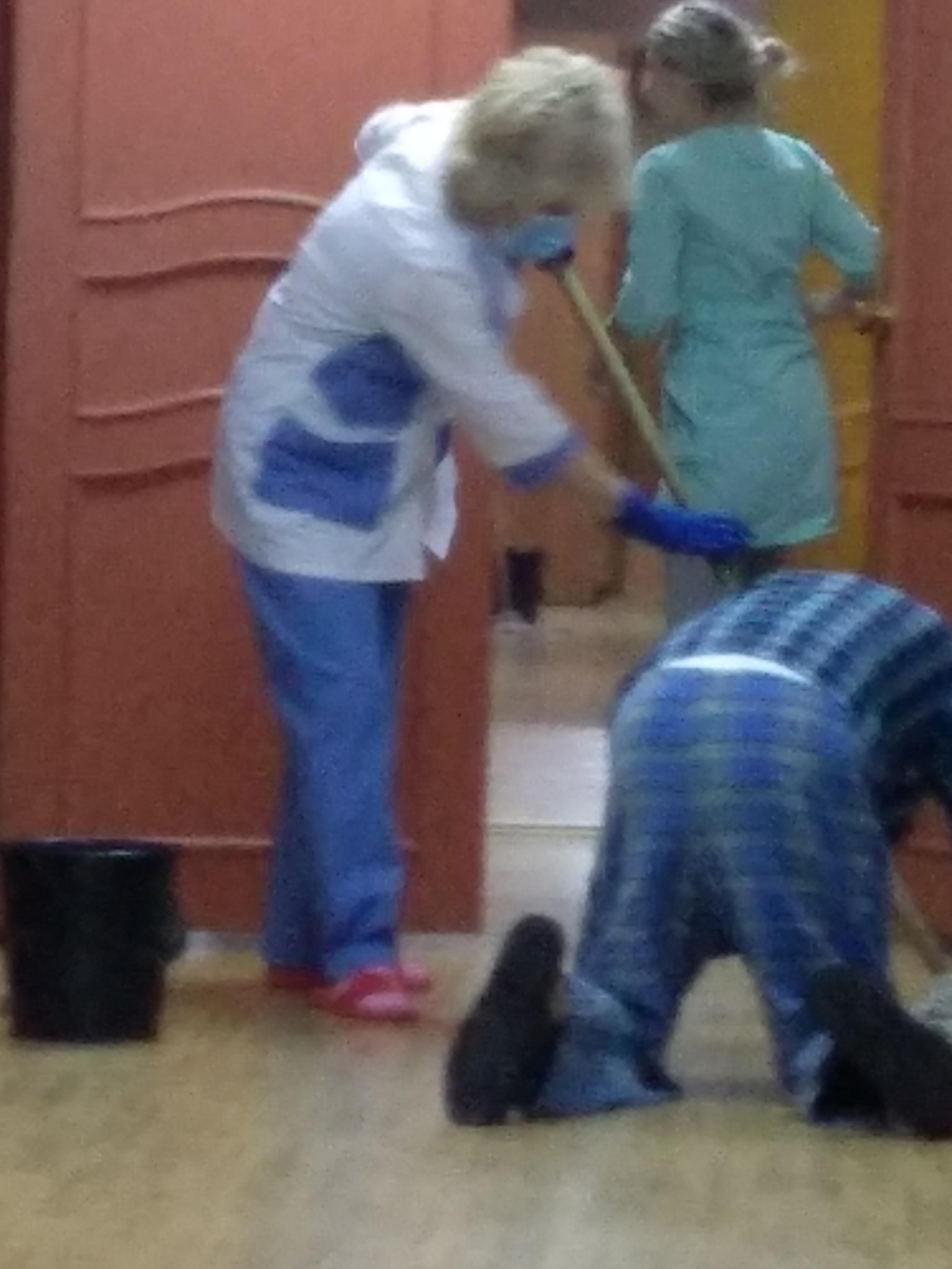 Наркология петропавловск камчатский лечение наркомании отзывы дмитров