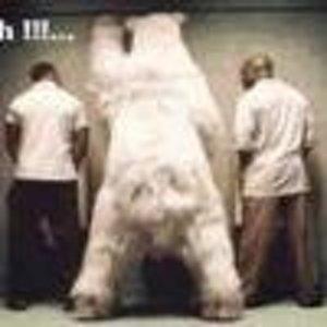 Медвед Медведович