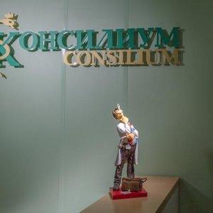 Консилиум