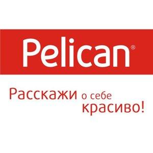 Pelican Kids