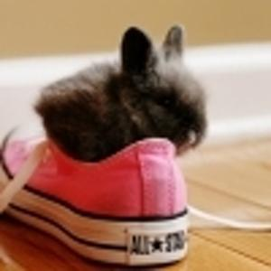 НУ-ДА-эксперт по шнуркам