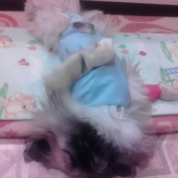 Это Дикуля после операции