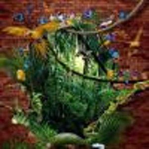 Зелёная Галерея