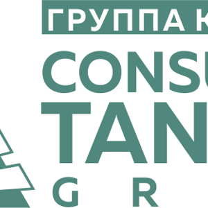 Consulting Tandem Group