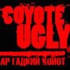 Гадкий Койот