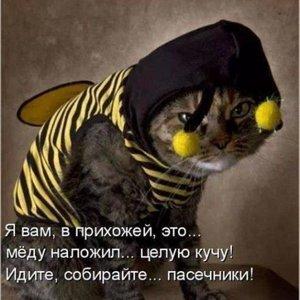 mosskin33