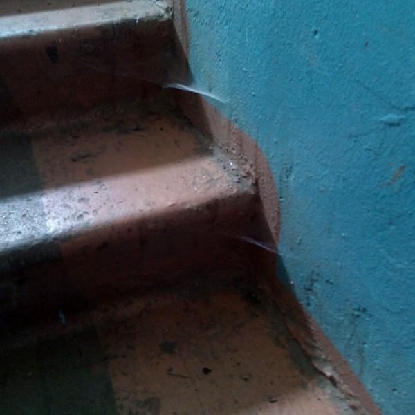 это лестница в нашем подъезде! паутина - с июня месяца! тоесть полы вообще не мыли ни разу!!!