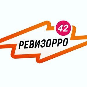 revizorro42