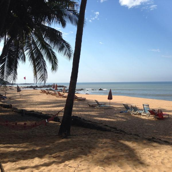 """Пляж Кола, Гоа, Индия. Экскурсия в Пегасе называется """"Пляж Кола"""", стоимость $140 с человека."""