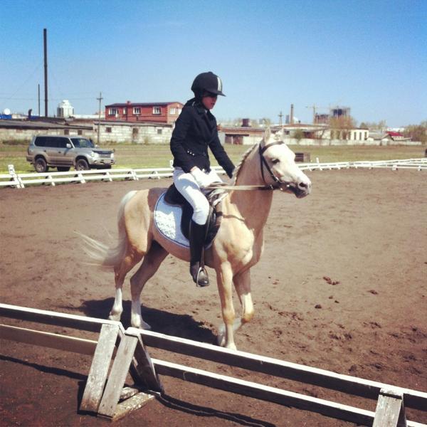 С прошедших соревнований для детей на лошадях и пони.  Одна из поняшек с ипподрома:)