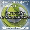 Kashkanov