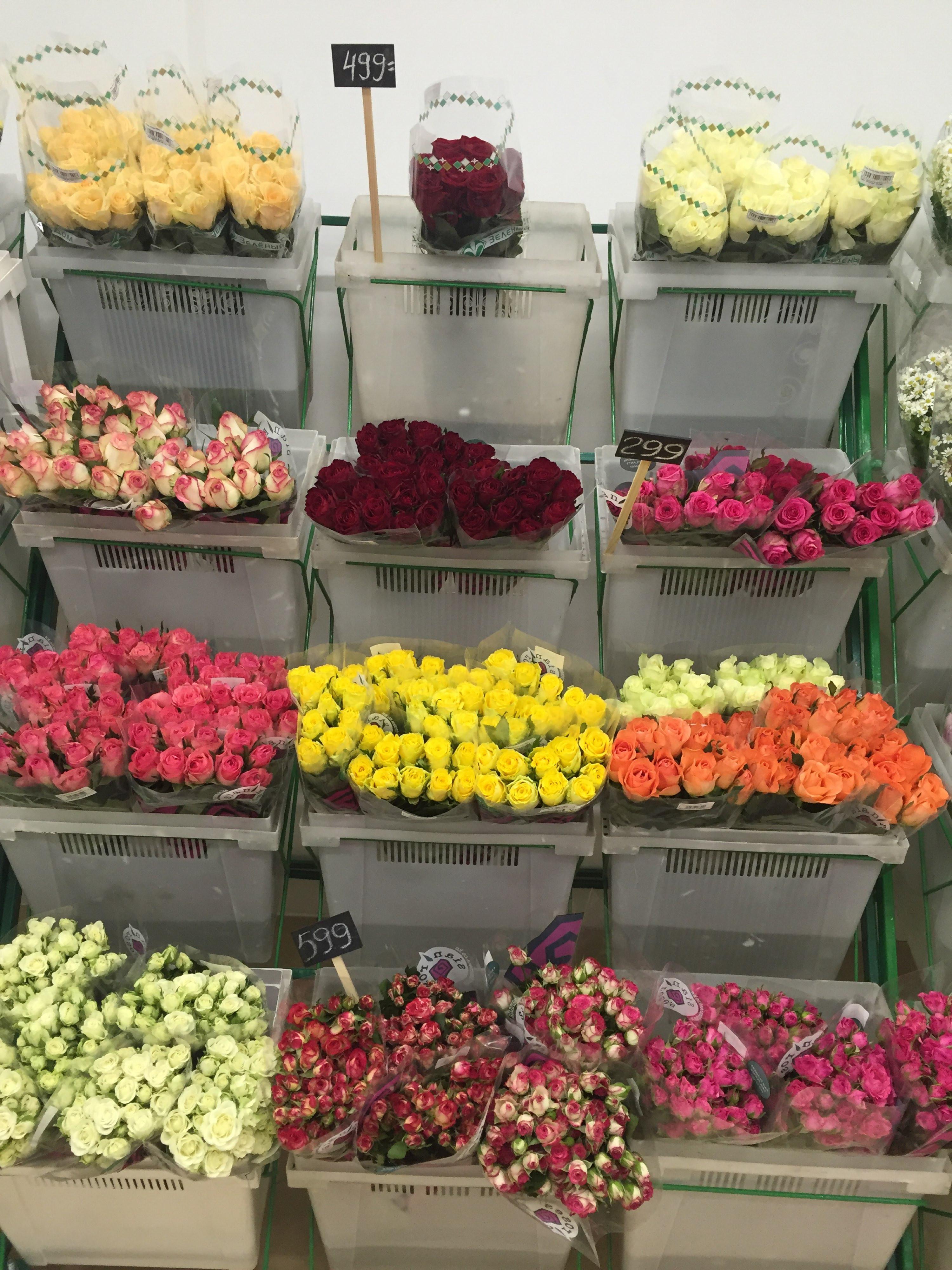 Вологда купить цветы по оптовым ценам