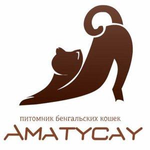Amaty Cay